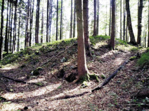 Burgruine Hagenfels bei Bayerisch Gmain © J. Lang
