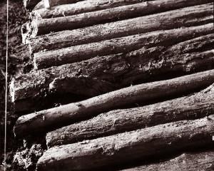 Teile des keltischen Bohlenwegs (ca. 600 v. Chr.) © Bayerisches Moor- und Torfmuseum/ Rottau