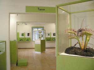 Innenraum Moormuseum © Stefan Kattari