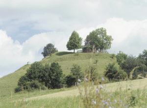 Schlossberg Tettelham © C. Soika