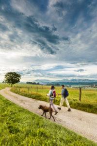 © Tourist-Info Waginger See / Richard Scheuerecker